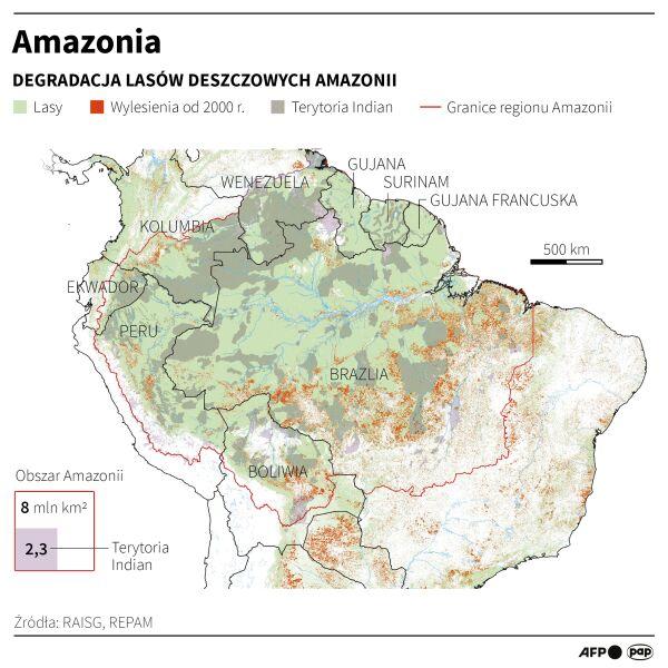 Degradacja lasów deszczowych w Amazonii (Maciej Zieliński/PAP)