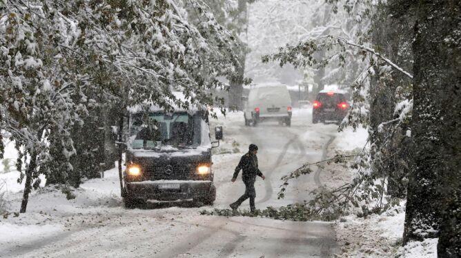 W Zakopanem pod naporem śniegu łamią się drzewa