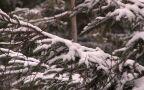 Kinga Baranowska o przygotowaniach do zimowych wycieczek w górach