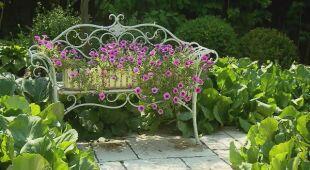 Ogród bardzo romantyczny (odc. 628)